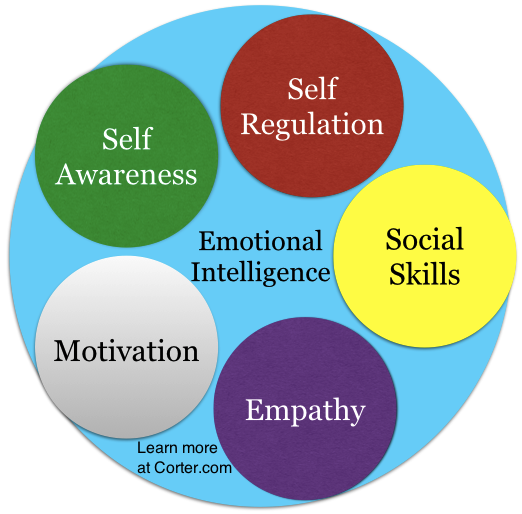 five basic competencies of emotional intelligence Understanding the five categories of emotional intelligence (eq) 1 self-awareness three examples illustrate the importance of emotional competencies.